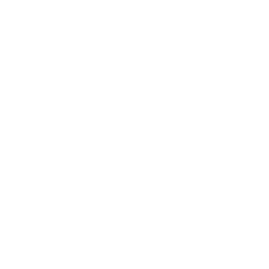 Zabbara - Logo White